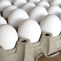 Таджикистан займется экспортом куриных яиц