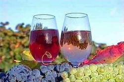 Инвесторам: в Молдове планируют отменить акцизы на вино