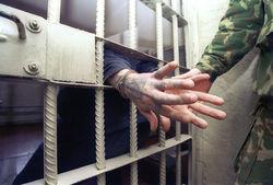 Как МВД Чечни поймало 12 разыскиваемых преступников за неделю?