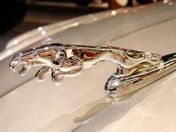 В Китае начнут выпускать Chery и Jaguar Land Rover