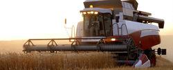 Повредит ли ВТО сельхоз сфере России?