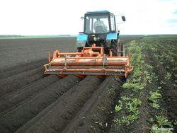 Инвестируют ли израильтяне в аграрный сектор Аджарии?