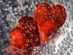 Из чего, согласно науке, состоит любовь?