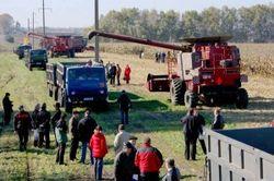 Что значит «сельскохозяйственный кооператив» по-кыргызски?