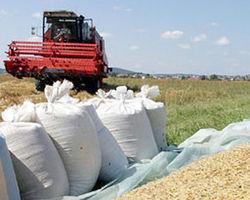 Кто виноват в срыве экспорта казахстанского зерна?