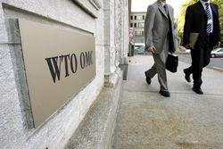Почему Азербайджан не готов к вступлению в ВТО?