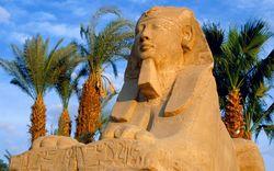Россияне снова предпочитают отдыхать в Египте