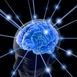 Ученые доказали: мозг умирает молодым?