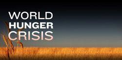 G-20: как стабилизировать цены на продовольственные товары в мире?