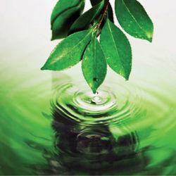 Кабмин поддержал программу «Экологически безопасный Крым»