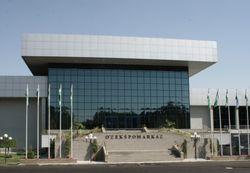 Какие выставки пройдут на этой неделе в Ташкенте?