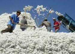 Таджикские текстильщики получили заказ из Москвы