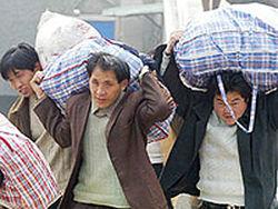 Прирост населения Центральной части России обеспечила миграция?