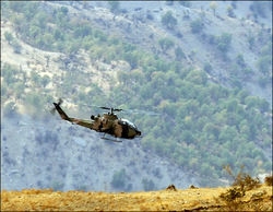 В Турции по ошибке были убиты более 30 мирных курдов
