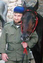 Почему лошадь Кадырова не смогла поучаствовать в скачках?