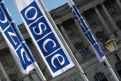 Чем не угодило ОБСЕ Беларуси?