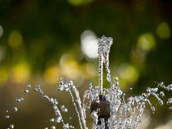 Батуми встречает туристов фонтаном с водкой