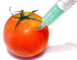 Борец с ГМО