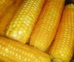 Цены на кукурузу