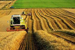 Профессиональный праздник работников сельского хозяйства