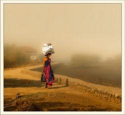 Индия станет самой густонаселенной страной на планете к 2028 году