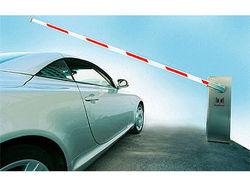 В Минэкономразвития требуют введения спецпошлин на импорт автомобилей