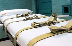 Делавэрский убийца был казнен по собственному желанию
