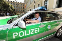 Делегация полицейских Европы
