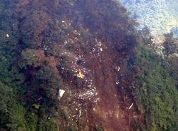 военные высадят деревья