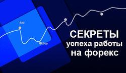 Дмитрий Возный: о секретах успеха работы