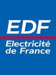 Electricite de France SA подвела итоги 2012 года