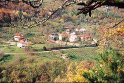 Недвижимость в Сербии: инвесторы делают упор на отдых в деревне