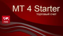 FIBO Group: МТ 4 Starter будет работать все лето