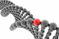 Генетики составляют древнюю историю