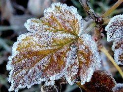 В Украину придут морозы