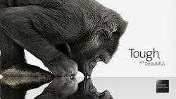 Gorilla Glass представит третью версию стекла