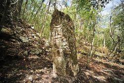 Открытие в Мексике: стелы с письменами майя, которым больше тысячи лет
