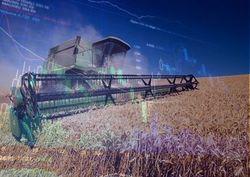 Инвесторам: рынок пшеницы ожидает неминуемый рост?