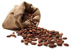 Цены на какао