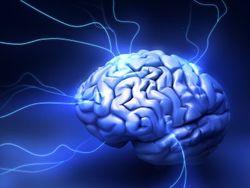 Мозг можно сберечь молодым