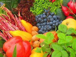 Фрукты и овощи влияют на восприятие мира
