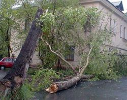 Киевский ураган