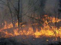 Лесной пожар под Иркутском
