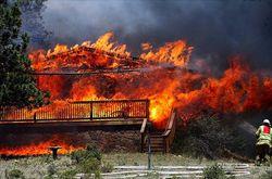 Лесные пожары бушуют в США