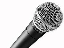 петь «под фанеру»