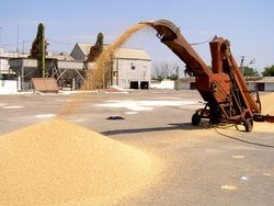 Запасы зерна в России