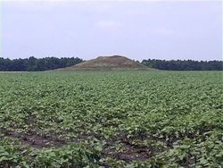 Исторические памятники стали огородами