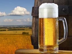 Реклама пива на телевидении