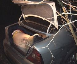 в багажнике гаишник обнаружил труп