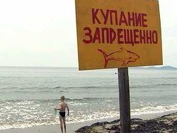 Пляжи Приморья защищаются от акул специальными сетками